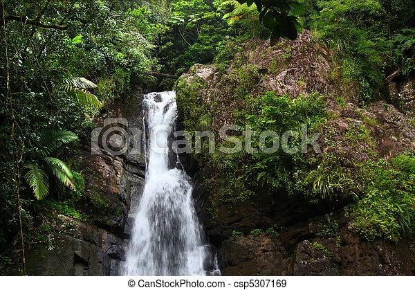 La Mina Falls - Puerto Rico - csp5307169