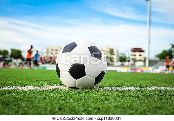 labda, futball, zöld fű - csp11836031
