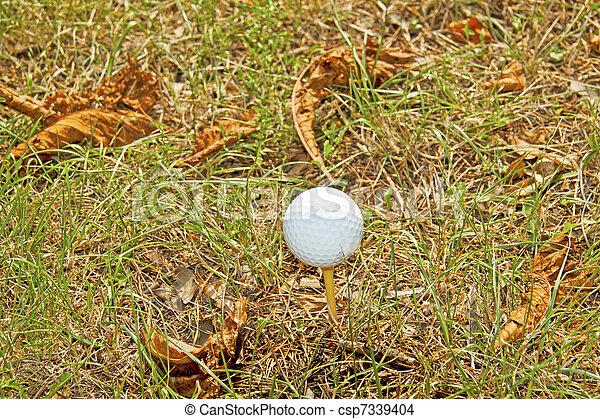 labda, golf - csp7339404