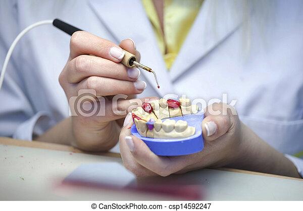 laboratoire, dentaire - csp14592247