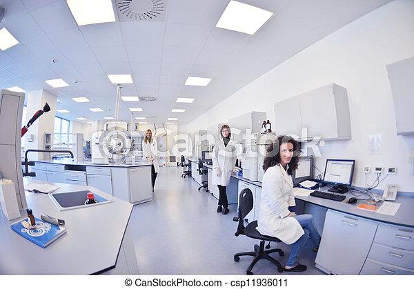 laboratorium, pracujący, naukowcy - csp11936011