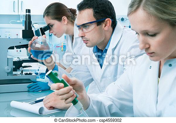 laboratorium - csp4559302