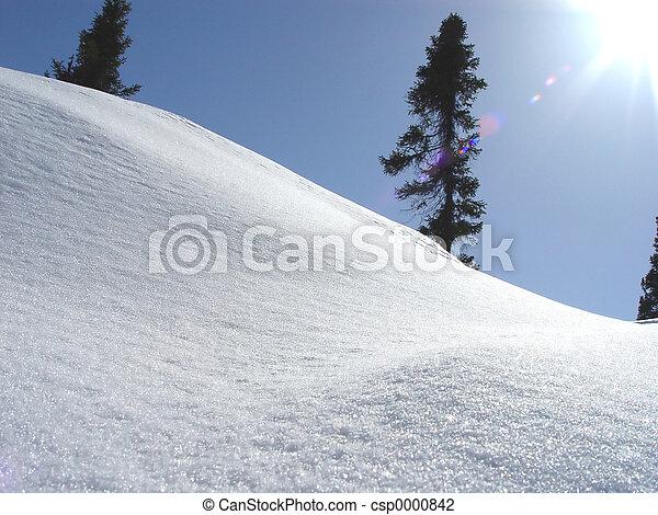 Labrador Landscape - csp0000842