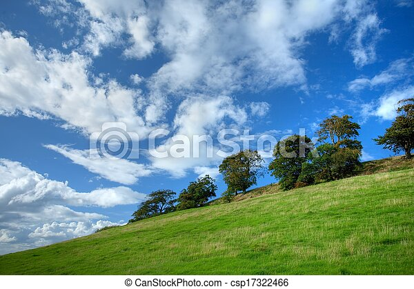 Árboles en Cotswold Hillside - csp17322466