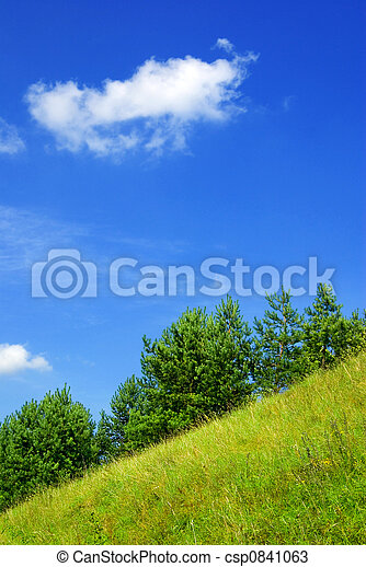 ladera, verano - csp0841063