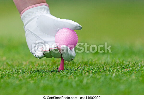 Ladies golf hand placing pink tee and ball into ground. - csp14602090