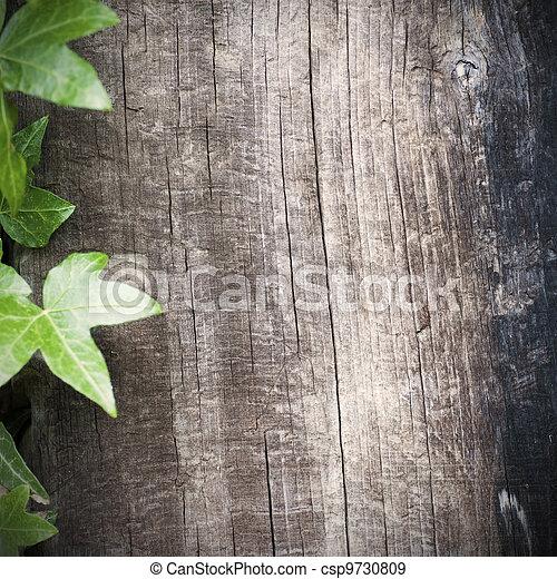 lado, cuadrado, habitación, marco de madera, texto, hiedra, plano de fondo, blanco, grungy, izquierda, imagen, estilo - csp9730809
