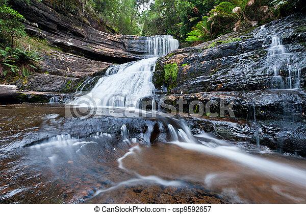 Lady Barron Falls, Mt Field National Park, Tasmania, Australia - csp9592657