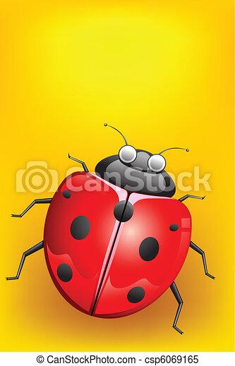 Lady Bug - csp6069165