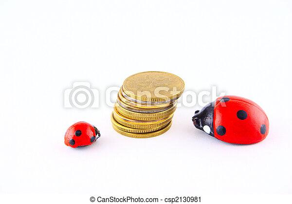 Ladybird with money - csp2130981