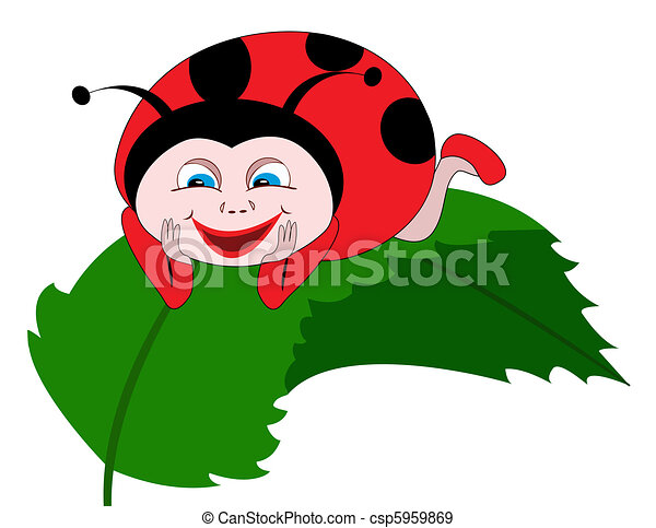 Ladybug on green leaf  - csp5959869