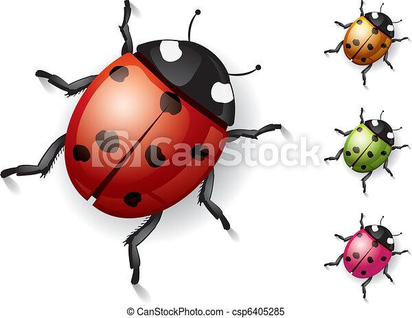 Ladybug on white - csp6405285