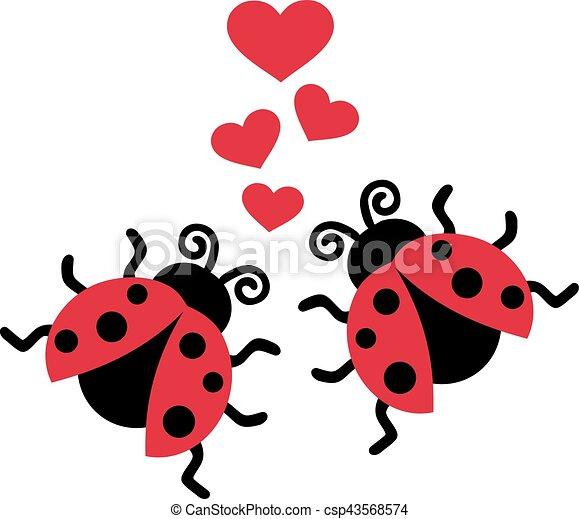 ladybugs, liefde, twee - csp43568574