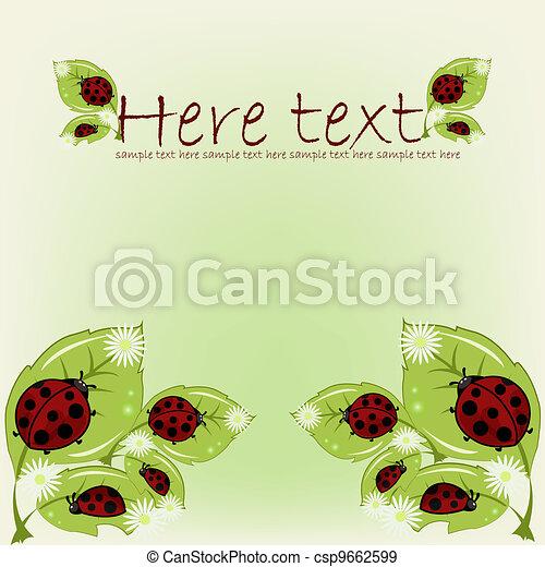 Ladybugs on leaflets with camomiles - csp9662599