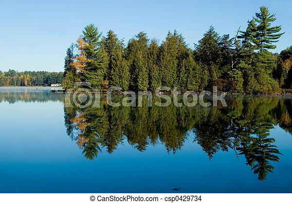 lago, árvores, pinho - csp0429734