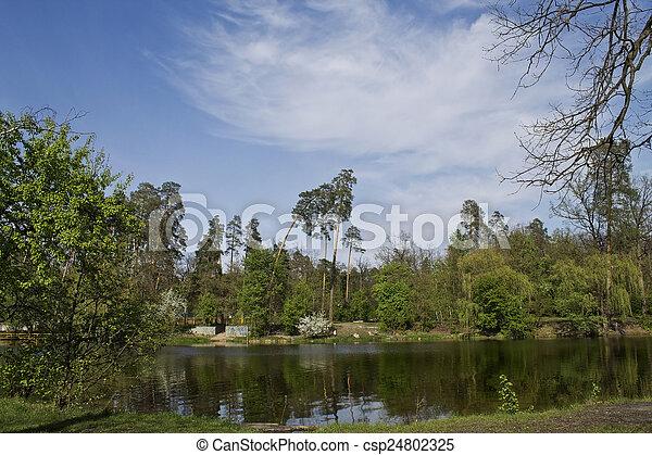 lago, céu, paisagem, árvores - csp24802325
