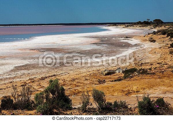 lago, mar, tyrrell - csp22717173