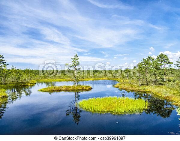 lago, paisagem, tallinn - csp39961897