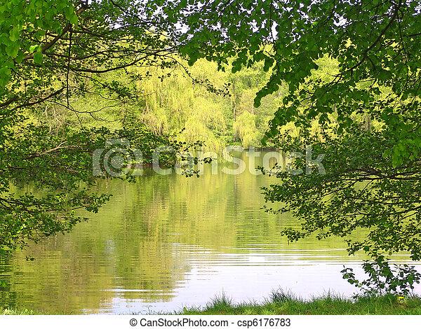 El paisaje del lago - csp6176783