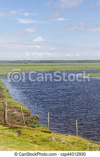 Lagoa do Peixe lake - csp44312930
