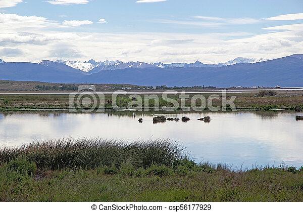 Laguna Nimez, a wildlife reserve at El Calafate in Patagonia, Argentina - csp56177929