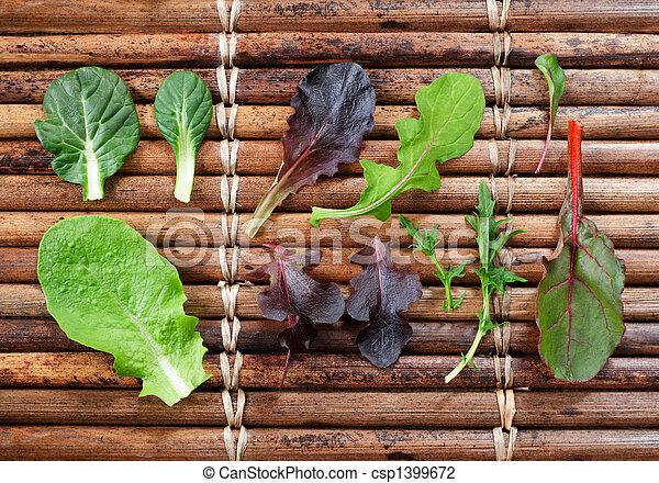 Laitue b b vert vari t grenade organique vari t - Variete de salade d hiver ...