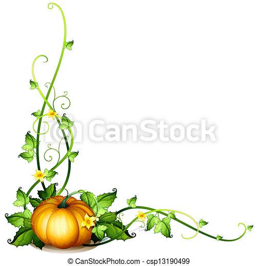 lakberendezési tárgyak, szőlőtőke, sütőtök - csp13190499