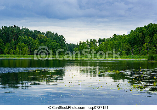 Lake and forest view. - csp0737181