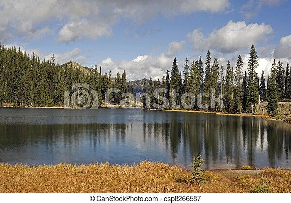 Lake at Kootenay Pass - csp8266587