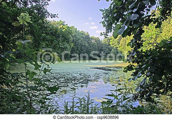 lake at summer - csp9638896