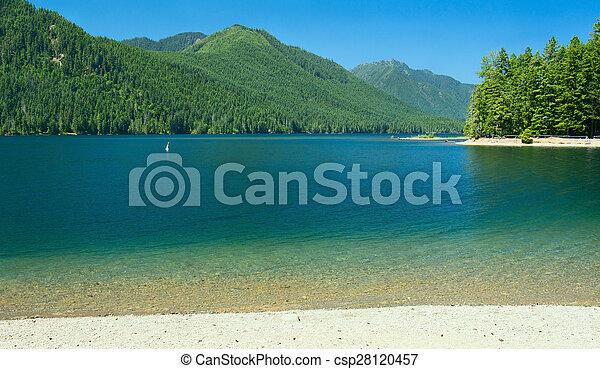 Lake Cushman Beach in Summer - csp28120457