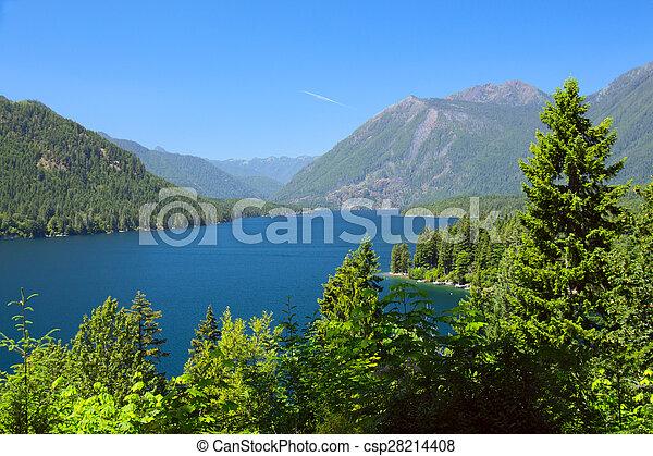 Lake Cushman Cove in Summer - csp28214408