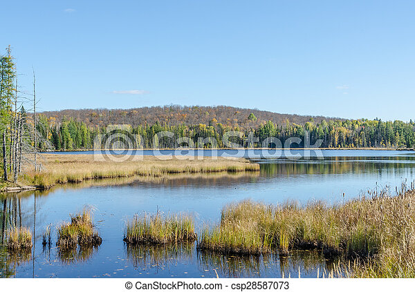Lake in Algonquin Park - csp28587073