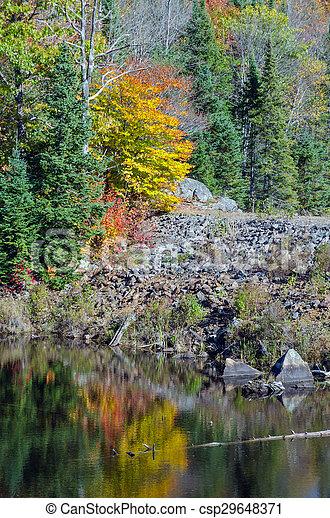 Lake in Algonquin Park - csp29648371