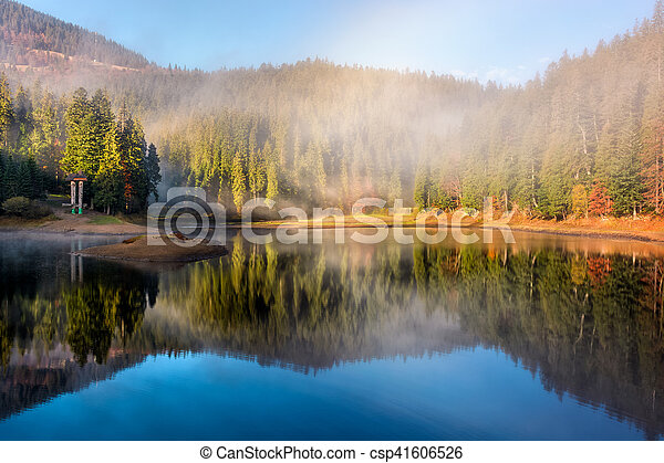 lake in foggy spruce forest in mountains - csp41606526
