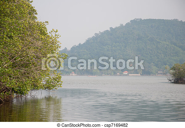 lake in forest - csp7169482