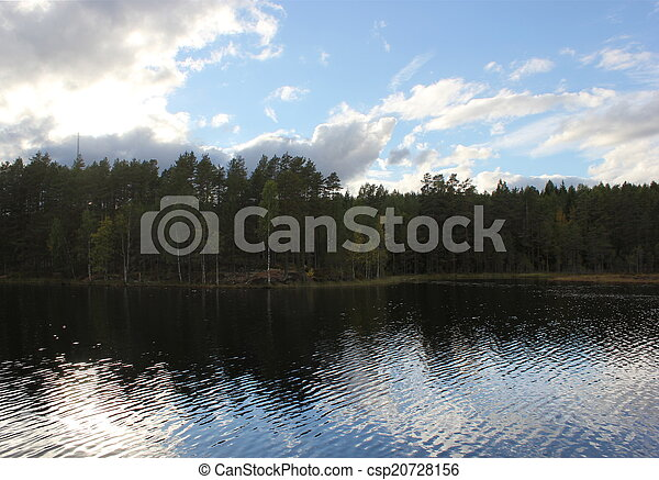 Lake In Front Of Forest - csp20728156