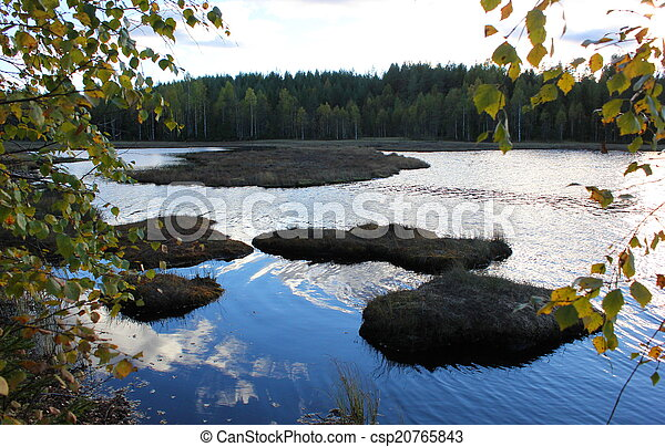 Lake In Front Of Forest - csp20765843