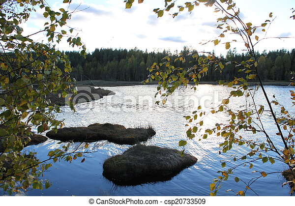 Lake In Front Of Forest - csp20733509