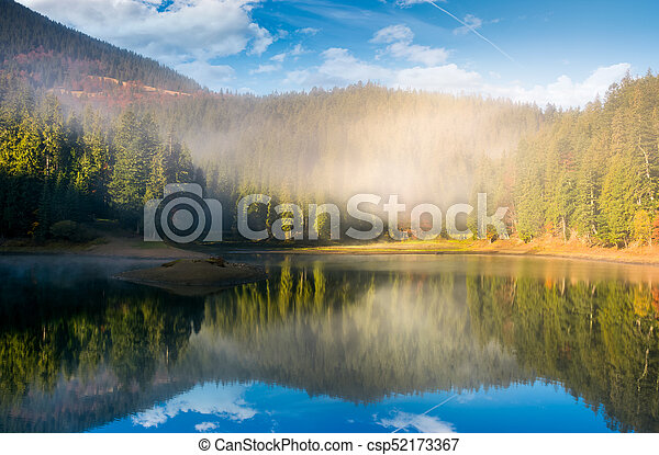 lake in spruce forest at foggy sunrise - csp52173367