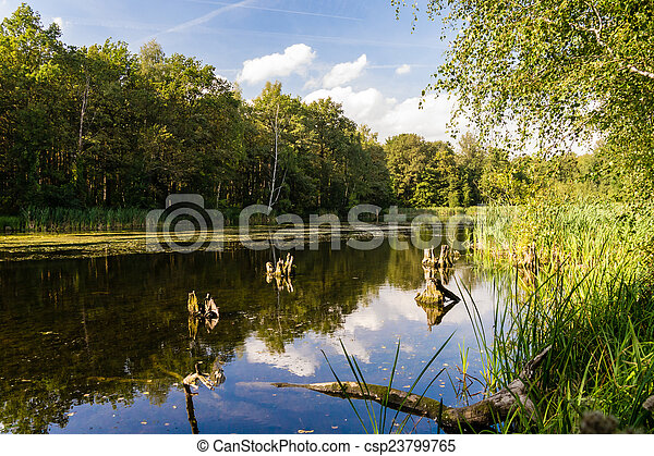 lake in summer - csp23799765