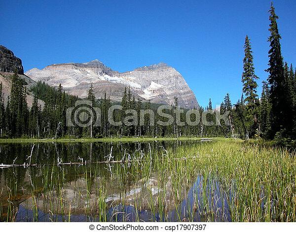 Lake O'Hara, Yoho National Park, British Columbia, Canada - csp17907397