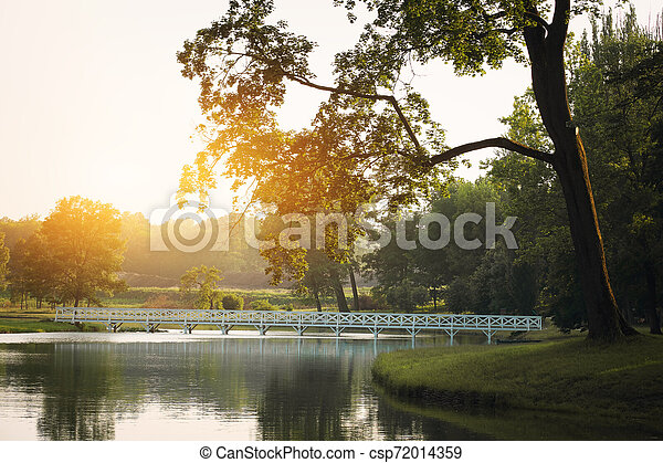 Lake on the summer park - csp72014359