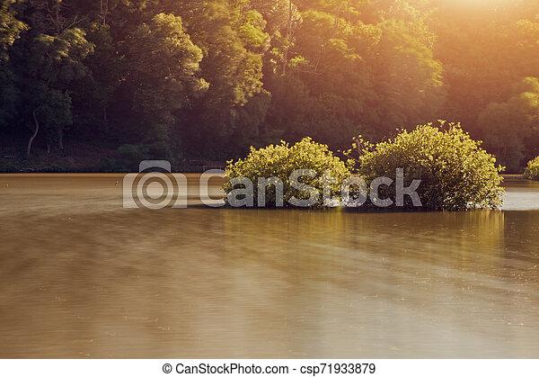 Lake - csp71933879