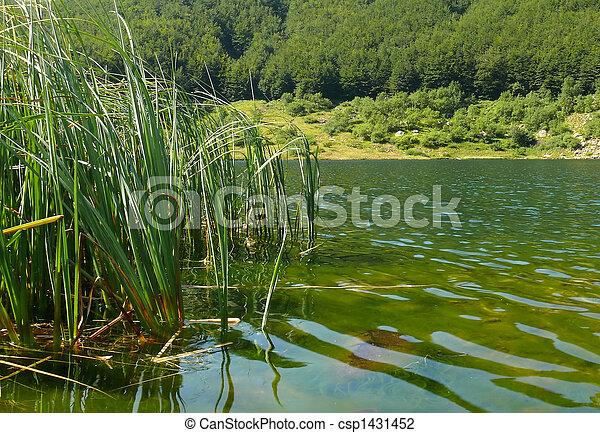 lake - csp1431452