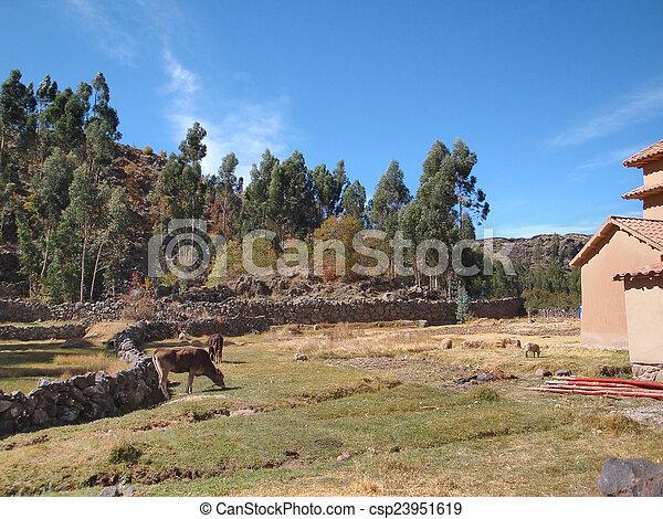 Lake Titicaca - csp23951619