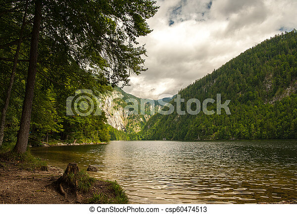 Lake Toplitzsee in summer on a cloudy day - csp60474513