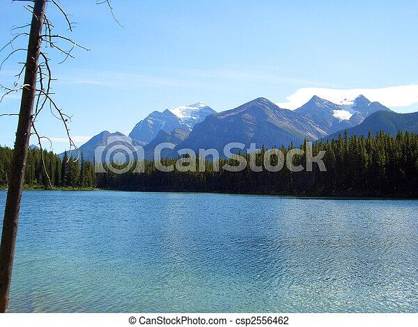 Lake View - csp2556462