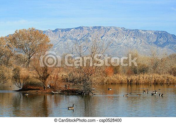 Lake View - csp0528400
