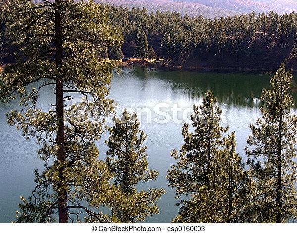 Lakeside Cabin - csp0160003